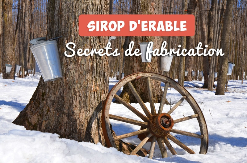 Sirop d'érable - secrets-de-fabrication