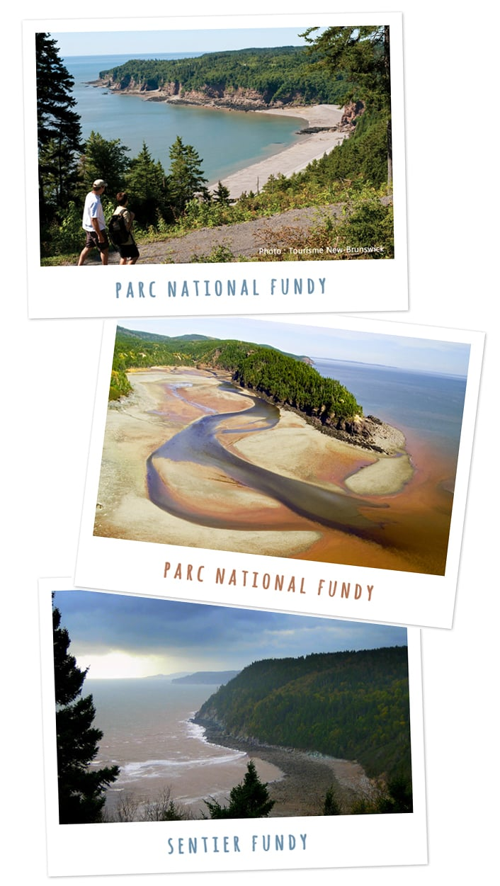 Nouveau Brunswick - Parc national Fundy