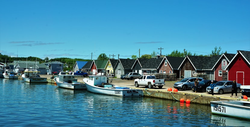 Port de North Rustico