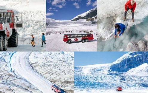 Columbia Icefield Glacier Experience