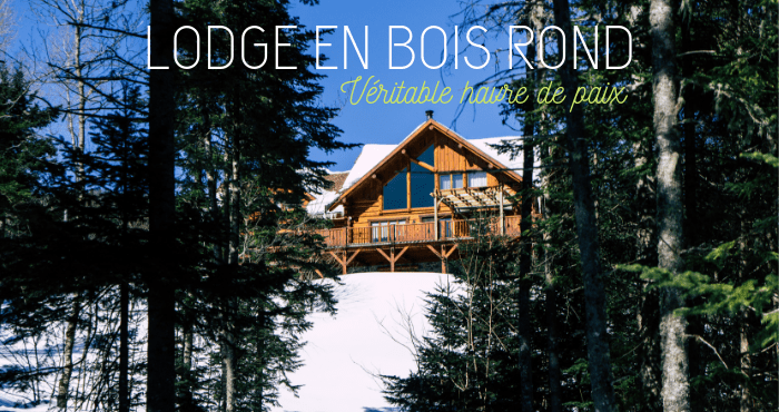 lodge bois foret
